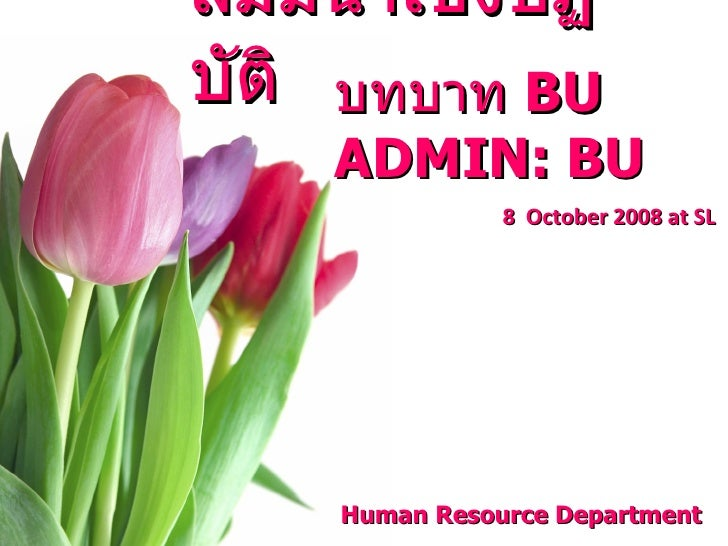 <ul><li>สัมมนาเชิงปฏิบัติ  </li></ul>บทบาท  BU ADMIN: BU  Human Resource Department  8  October 2008 at SL