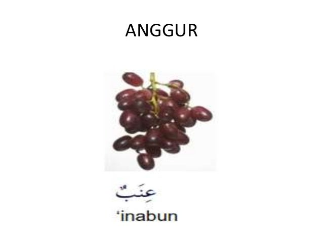 Nama Buah Buahan Dalam B Arab