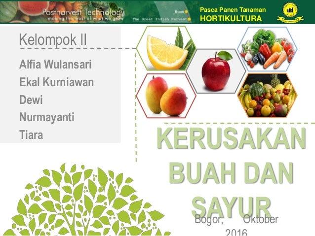 Pasca Panen Tanaman HORTIKULTURA KERUSAKAN BUAH DAN SAYURBogor, Oktober Kelompok II Alfia Wulansari Ekal Kurniawan Dewi Nu...