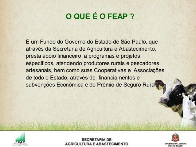 É um Fundo do Governo do Estado de São Paulo, que através da Secretaria de Agricultura e Abastecimento, presta apoio finan...