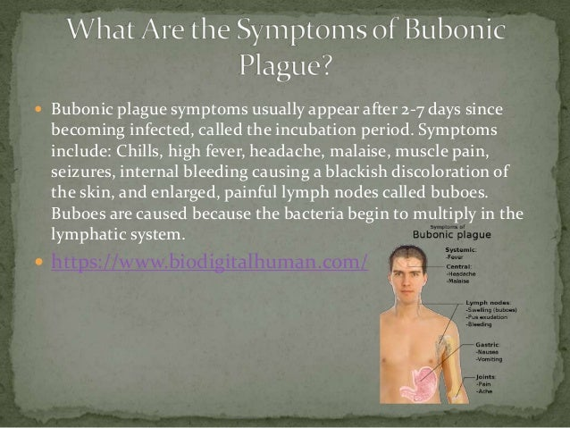 signs and symptoms of the bubonic plague Bubonic plague is the most common form it usually occurs from the bite of an infected flea that has fed on an infected rodent, such as a rat bubonic plague symptoms usually include.