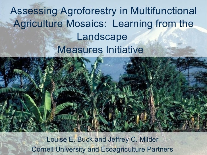 Assessing Agroforestry in Multifunctional Agriculture Mosaics:  Learning from the Landscape  Measures Initiative  Louise E...