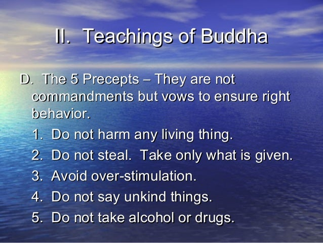 the characteristics and goals of buddhas teachings Buddhism buddhism's core beliefs core beliefs of buddhism: buddhism, like most of the great religions of the world, is divided into many different traditions.