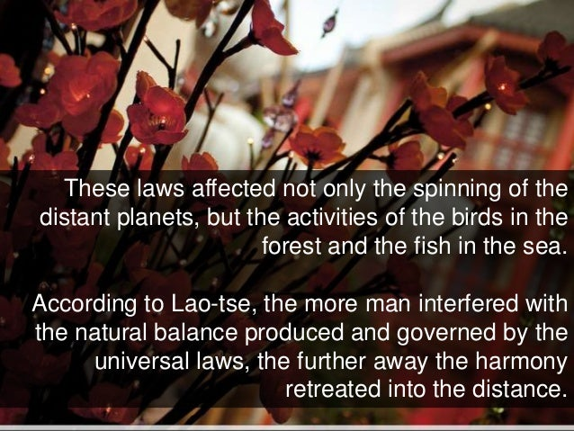 These laws affected not only the spinning of the distant planets, but the activities of the birds in the forest and the fi...