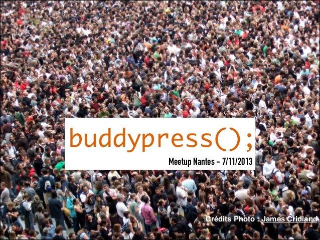 buddypress(); Meetup Nantes - 7/11/2013  Crédits Photo : James Cridland