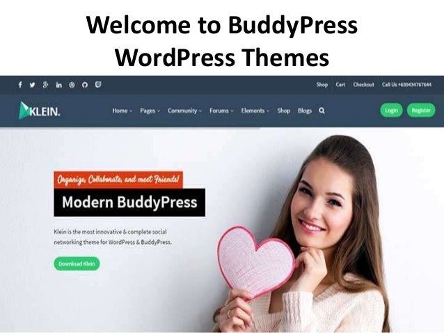 Buddy Press Wordpress Themes