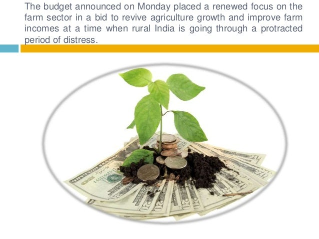 The budget announced on Monday placed a renewed focus on the farm sector in a bid to revive agriculture growth and improve...