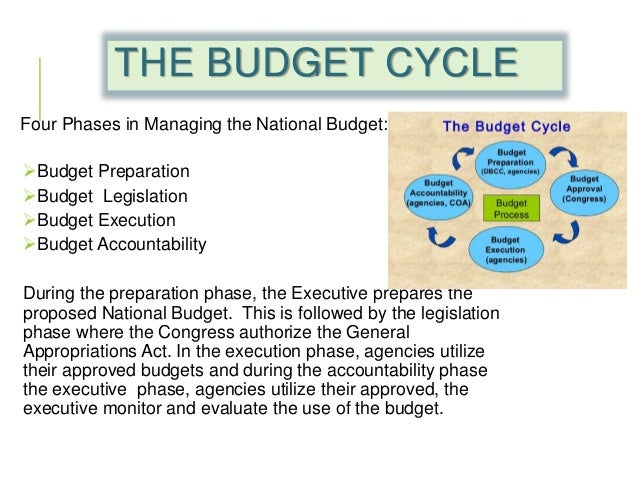 Public Budgeting Research Paper Starter