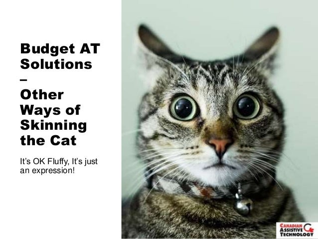 Budget AT Solutions – Other Ways of Skinning the Cat It's OK Fluffy, It's just an expression!