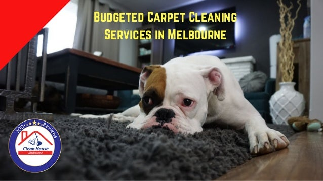 Budgeted Carpet Cleaning Services in Melbourne