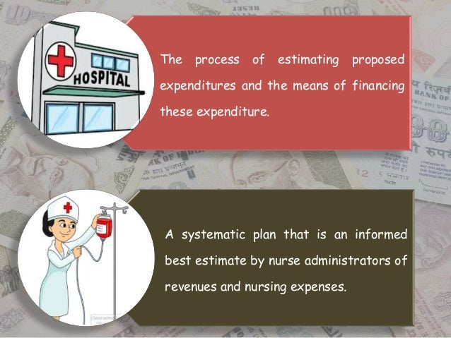how are hospital s revenue and expenses grouped for planning and control Hcs 405 week 3 learning team assignment financial statements review resources: patton-fuller community hospital virtual organization and university of phoenix.