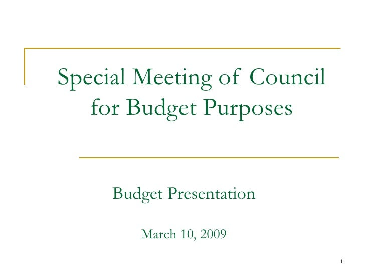 Special Meeting of Council for Budget Purposes Budget Presentation March 10, 2009