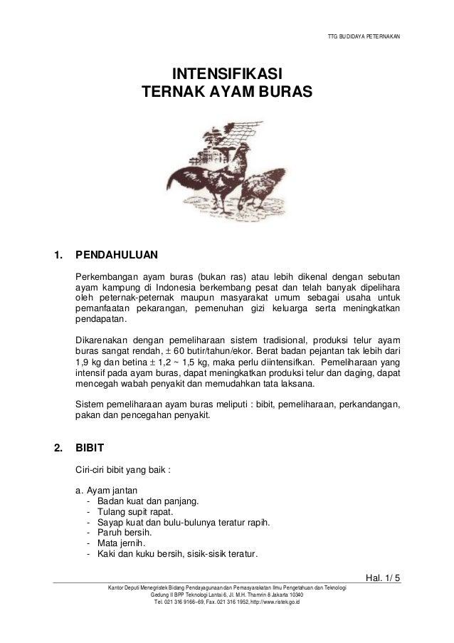 TTG BUDIDAYA PETERNAKAN Hal. 1/ 5 Kantor Deputi Menegristek Bidang Pendayagunaan dan Pemasyarakatan Ilmu Pengetahuan dan T...