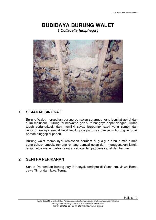 TTG BUDIDAYA PETERNAKAN Hal. 1/ 10 Kantor Deputi Menegristek Bidang Pendayagunaan dan Pemasyarakatan Ilmu Pengetahuan dan ...