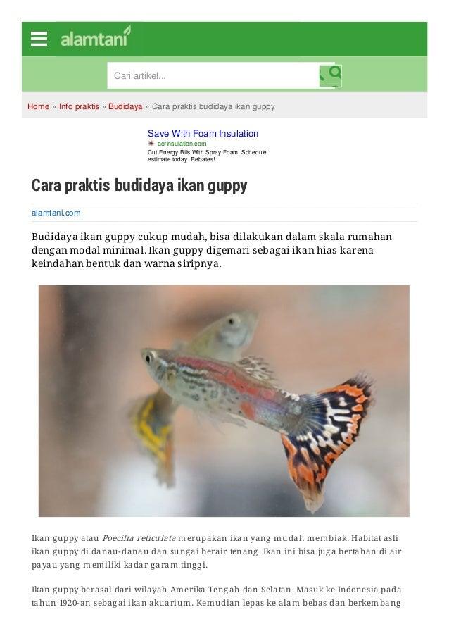 Ebook Budidaya Ikan Cupang