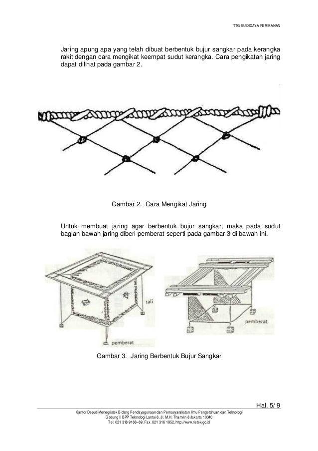 TTG BUDIDAYA PERIKANAN  Untuk dapat mengikat bambu/kayu dengan mudah dapat dilihat pada gambar 4.  Gambar 4. Pelampung Dii...