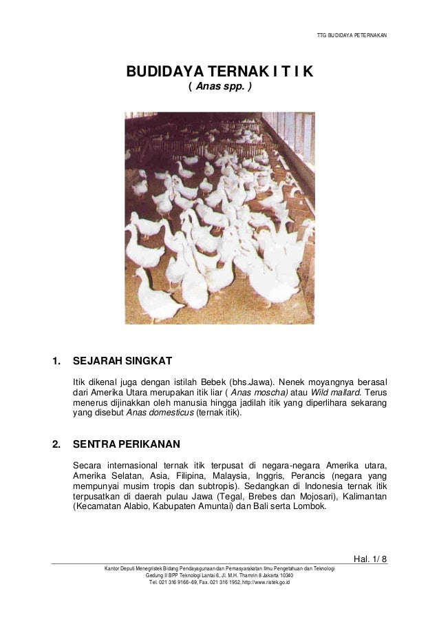 TTG BUDIDAYA PETERNAKAN Hal. 1/ 8 Kantor Deputi Menegristek Bidang Pendayagunaan dan Pemasyarakatan Ilmu Pengetahuan dan T...