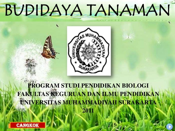 BUDIDAYA TANAMAN    PROGRAM STUDI PENDIDIKAN BIOLOGI FAKULTAS KEGURUAN DAN ILMU PENDIDIKAN  UNIVERSITAS MUHAMMADIYAH SURAK...