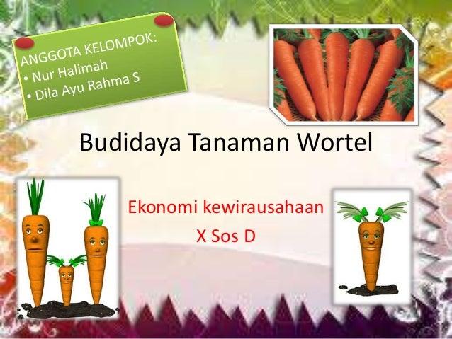 29+ Samping pada tanaman wortel adalah information