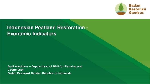 1 Indonesian Peatland Restoration - Economic Indicators Budi Wardhana – Deputy Head of BRG for Planning and Cooperation Ba...