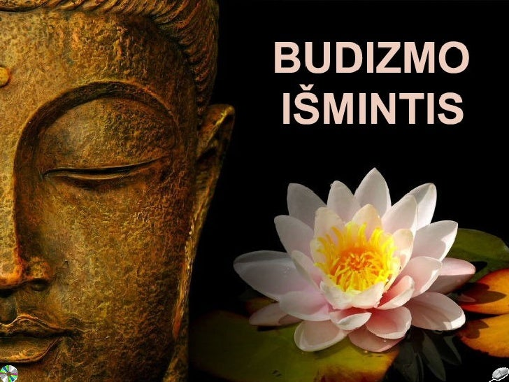 Budizmo išmintis