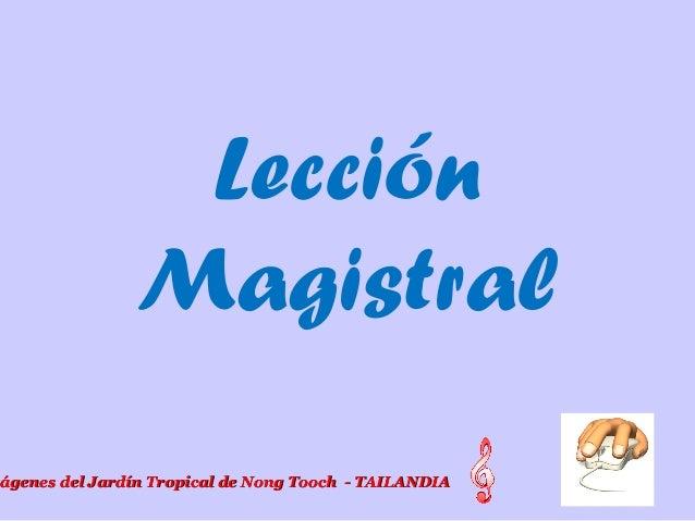 Lección Magistral mágenes del Jardín Tropical de Nong Tooch - TAILANDIAágenes del Jardín Tropical de Nong Tooch - TAILANDIA