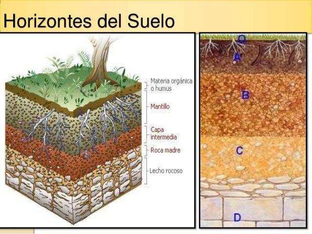 Buenas practicas manejo del suelo curso jica 2012 for Como estan formados los suelos