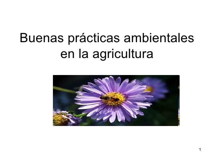 Buenas prácticas ambientales     en la agricultura                               1