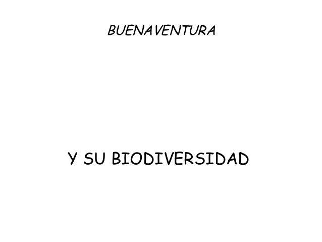 BUENAVENTURA Y SU BIODIVERSIDAD