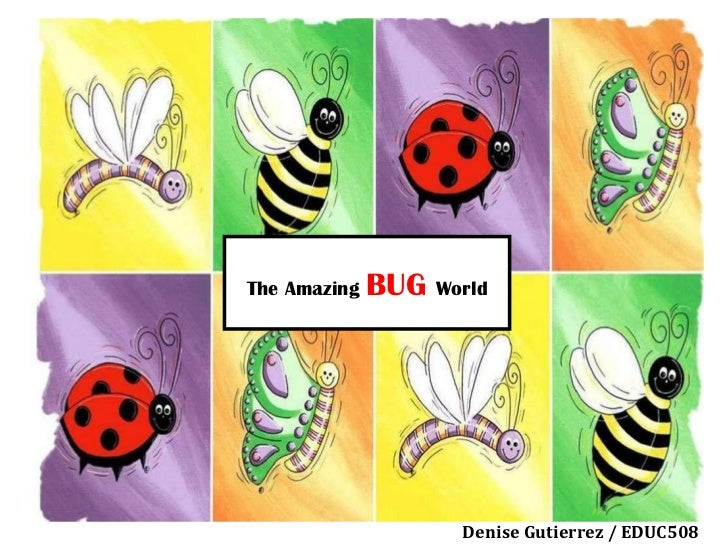 The Amazing  BUG  World Denise Gutierrez / EDUC508