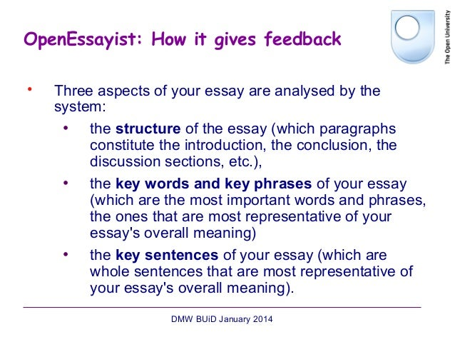 essay key words phrases