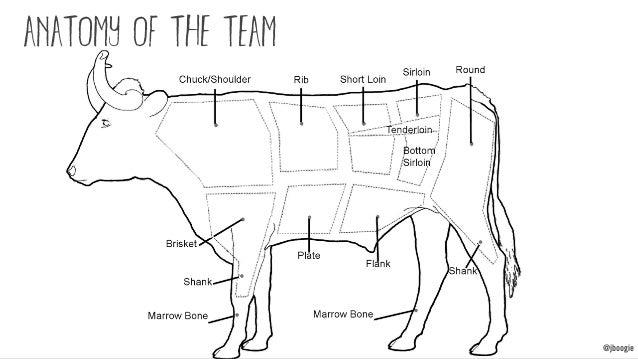 @jboogie anatomy of the team @jboogie
