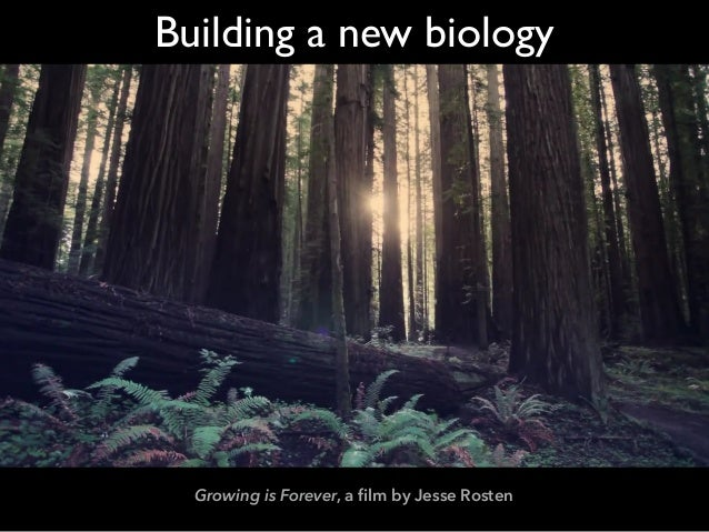 Growing is Forever, a film by Jesse Rosten Building a new biology