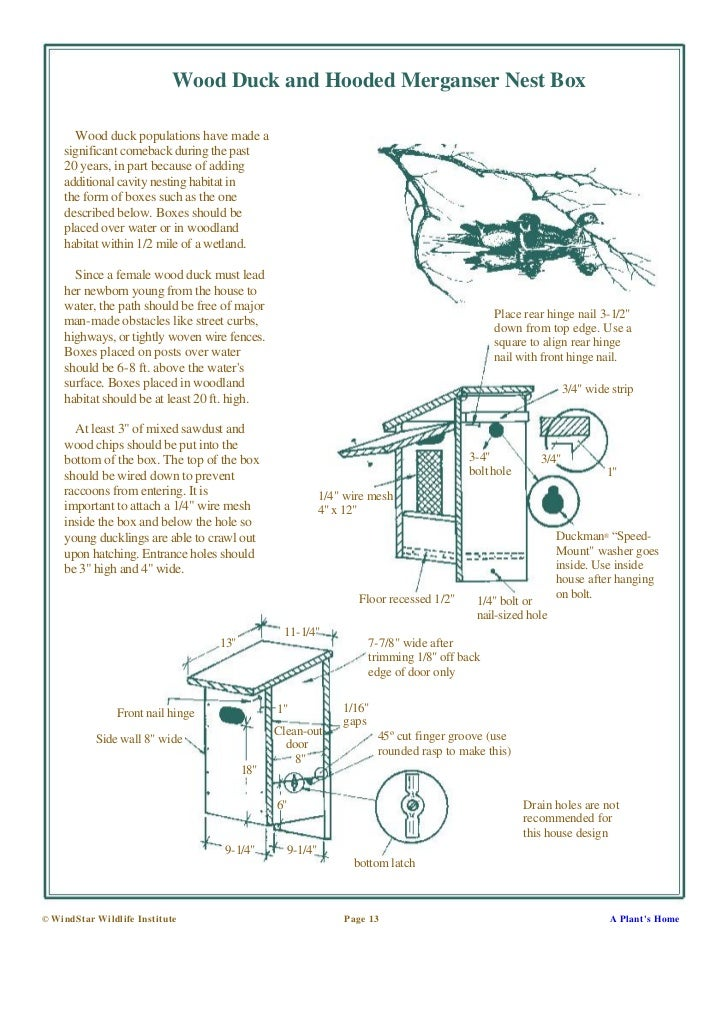 Wood duck house plans to build for Duck slide plans