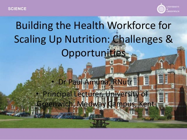Building the Health Workforce forScaling Up Nutrition: Challenges &          Opportunities         • Dr Paul Amuna, RNutr ...