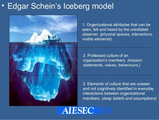 Edgar Schein Model of Organization Culture