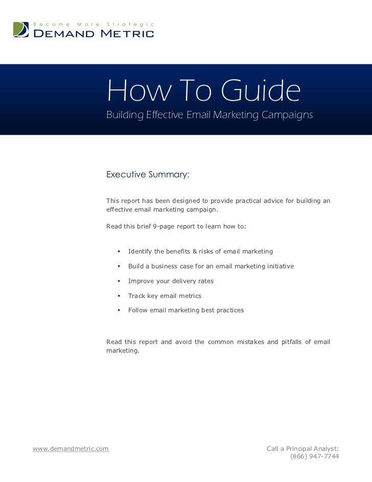 How To Guide                   Building Effective Email Marketing Campaigns                   Executive Summary:          ...