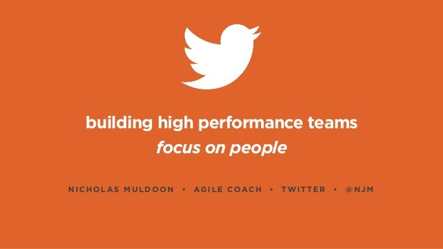 building a high performance project team High performance teams a team is more than a group of people who work together a high performing team is a group of people who share a common vision, goals, metrics and who collaborate, challenge and hold each other accountable to achieve outstanding results.