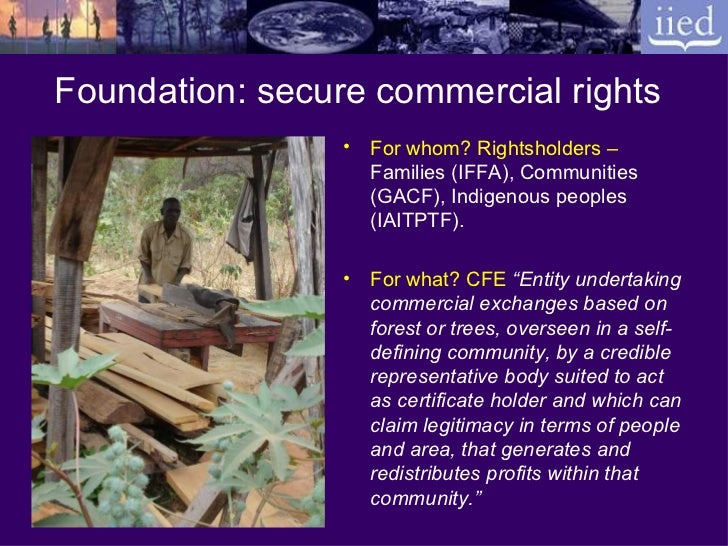 Building profitable and sustainable community forest