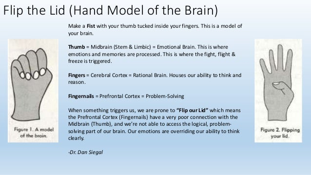 BRAIN RULE # 8 Stressed brains don't' learn in the same way that non stressed brains do.