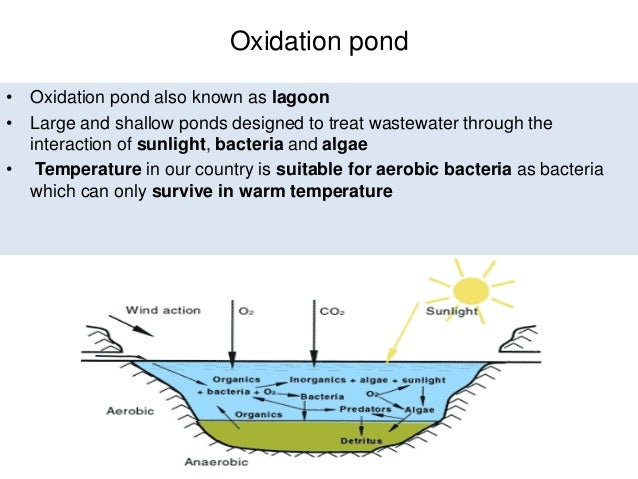 Sustainable waste water treatment for Design criteria of oxidation pond
