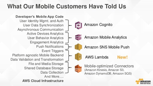 What Our Mobile Customers Have Told Us Developer's Mobile App Code User Identity Mgmt. and Auth User Data Synchronization ...