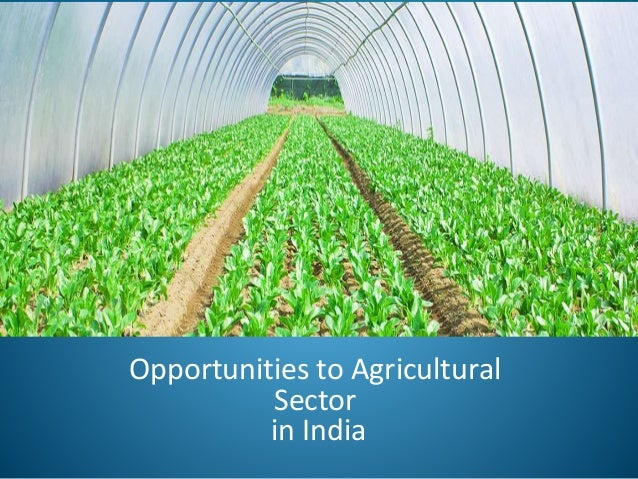 •Food processing sector India has an abundant supply of food yet only a small portion of these foods is processed. Neverth...