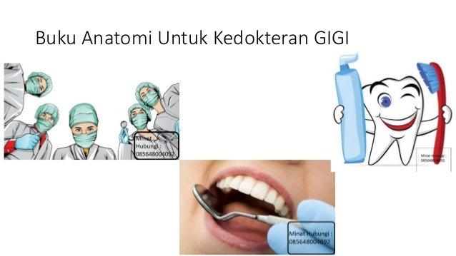Ebook Kedokteran Gigi Gratis