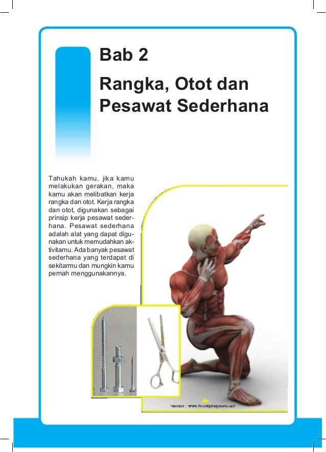 800+ Gambar Cover Yang Berjudul Otot Manusia HD Terbaru ...