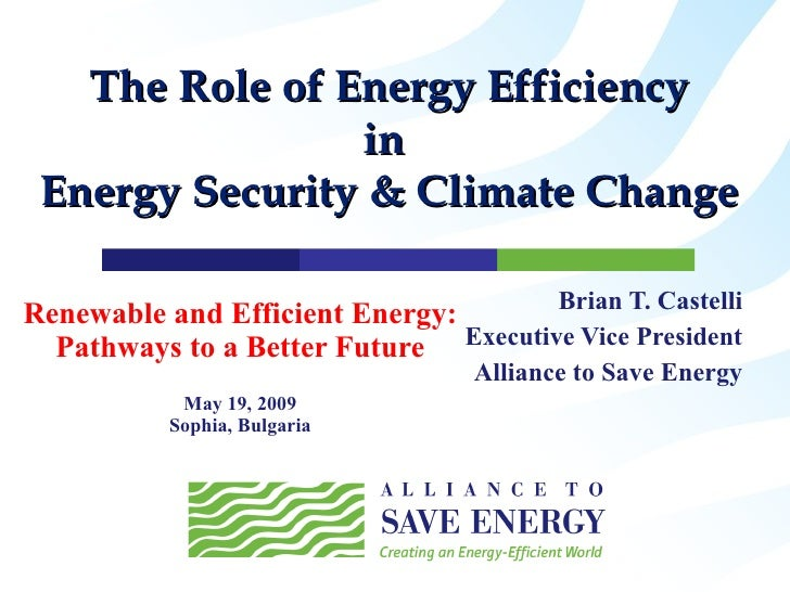 Renewable and Efficient Energy: Pathways to a Better Future May 19, 2009 Sophia, Bulgaria Brian T. Castelli Executive Vice...