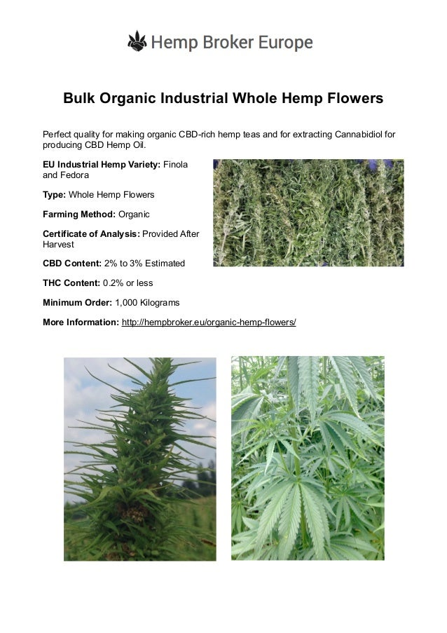 Bulk Organic Industrial Whole Hemp Flowers Perfect quality for making organic CBD-rich hemp teas and for extracting Cannab...