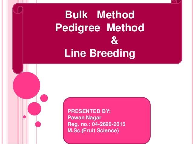 Bulk Method Pedigree Method & Line Breeding PRESENTED BY: Pawan Nagar Reg. no.: 04-2690-2015 M.Sc.(Fruit Science)