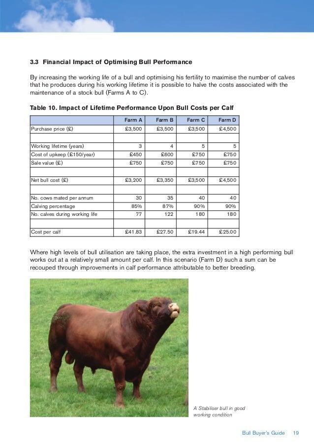 Bull - TV Review - Common Sense Media