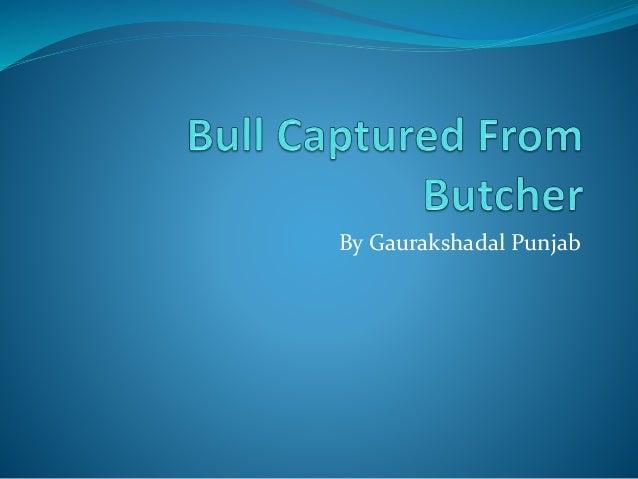 By Gaurakshadal Punjab